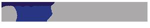 Ostdeutsches Wirtschaftsforum Logo